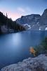 Washington Pass, Blue Lake - Larch on lake shore during blue hour