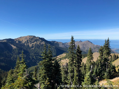 View from Sunset Point area of Hurricane Ridge