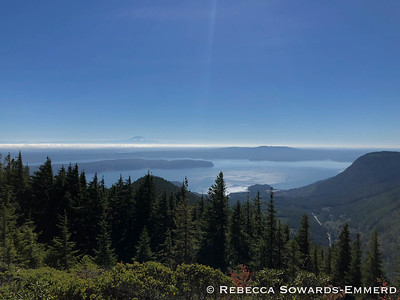 Next we drove up to the Mt Walker viewpoint. There is Mt Rainier in the distance.