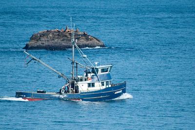 Fishing boats and seals at Cape Flattery, WA