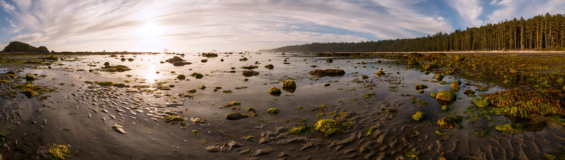 Olympic NP, Ozette Coast - Panorama of bay near Sand Point at low tide