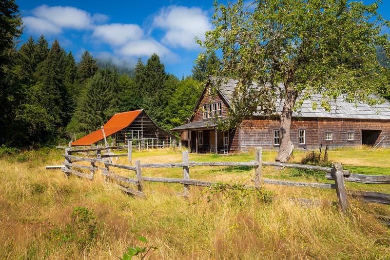 Quinault, Rainforest - Kestner Homestead, tree, and barn