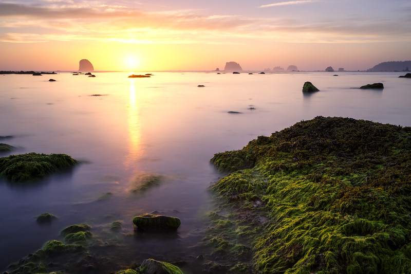 Olympic NP, Ozette Coast - Last moment of sunset with pink and yellow reflected in water
