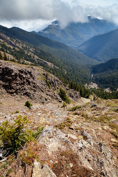 Quilcene, Mt. Townsend - Looking down a gulley towards the valley floor