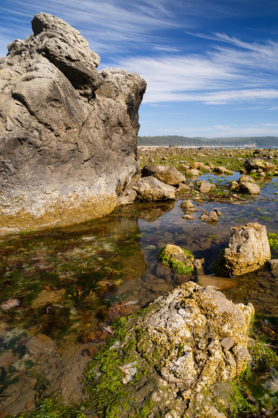 Olympic NP, Ozette Coast - Tide pools at low tide
