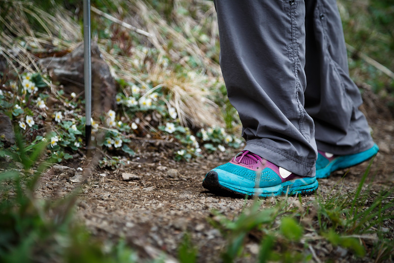Quilcene, Mt. Townsend - Close up of woman's shoes and hiking pole on trail