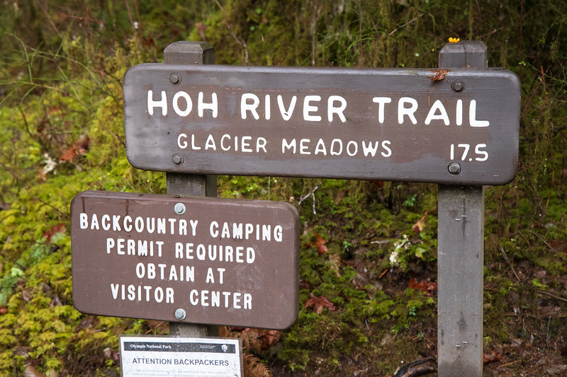Hoh, Rainforest - Hoh River Trail sign with permit information sign