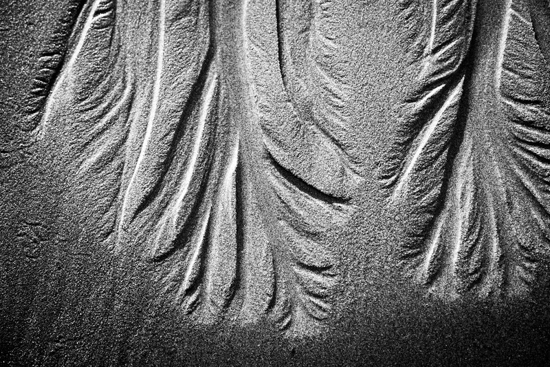 Kalaloch, Ruby Beach - Tree like patterns in sand, close up, black and white