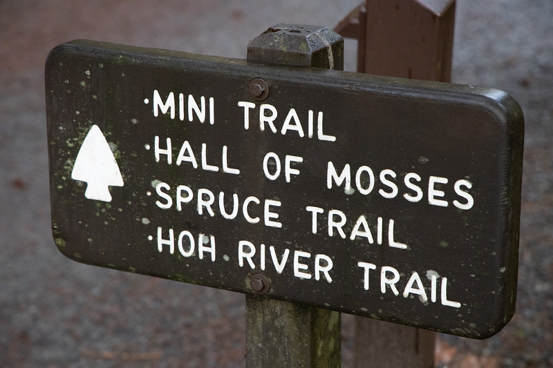 Hoh, Rainforest - Sign identifying trails leading from visitor center
