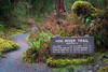Hoh, Rainforest - Hoh River Trail sign listing elevation and mileages for various locations