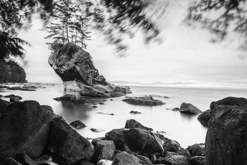 Washington coast