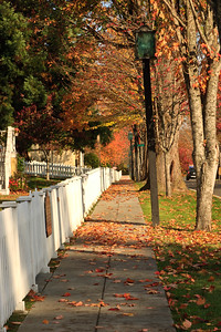 Rainier Ave. sidewalk in autumn