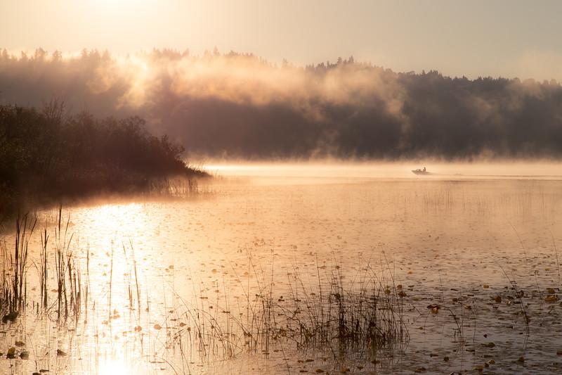Redmond, Marymoor - Boat on the lake in a misty orange sunrise