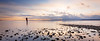 Edmonds, Marina Beach Park - Man standing in calm water at sunset, panoramic