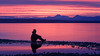 Edmonds, Marina Beach - Silhouette of man sitting on beach with tide pool and colorful sunset