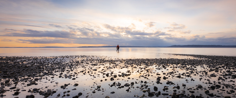 Edmonds, Marina Beach Park - Man standing in tide pool with lots of pebbles at sunset, panoramic