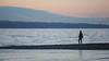 Seattle, Carkeek - Man standing on beach watching the sea post-sunset