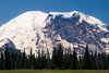 Rainier, Grand Park - Mt. Rainier in front of row of trees