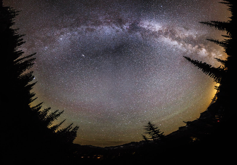 Rainier, Paradise - Milky Way panorama overhead surrounded by trees