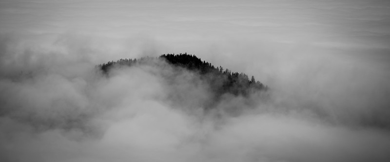 Rainier, Tolmie - Top of a hill surrounded by fog as seen from above, black and white