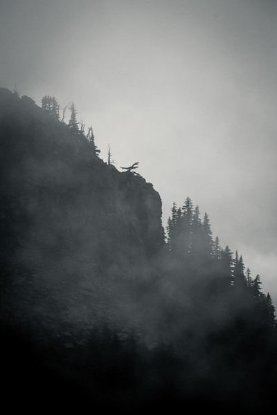 Rainier, Paradise - Ridgeline descending with rocks and trees in heavy clouds, black and white