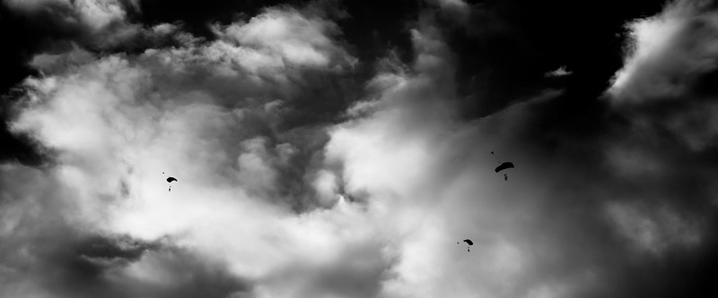 Snohomish, Riverfront - Skydivers overhead with chutes deployed, black and white