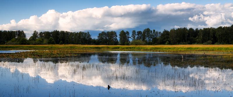 Snohomish, Bob Heirman - Panorama of Shadow Lake