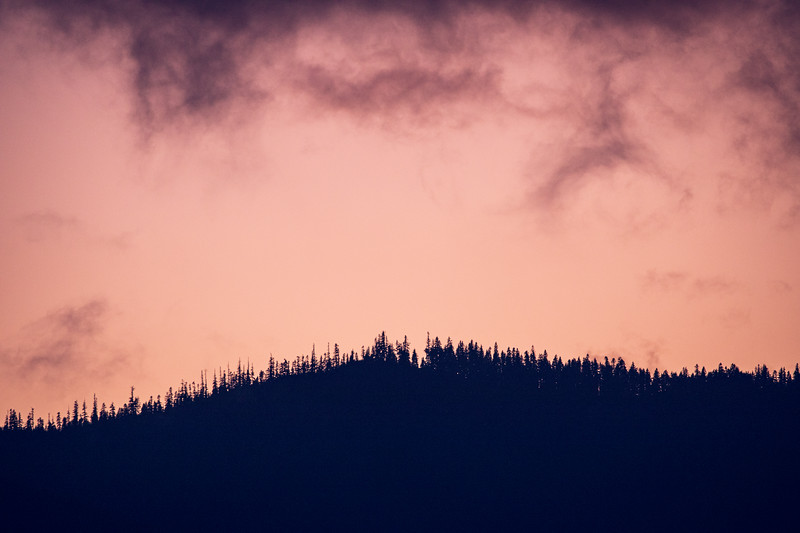 Snoqualmie Pass, Exit 47 - Trees on distant ridge line at sunset