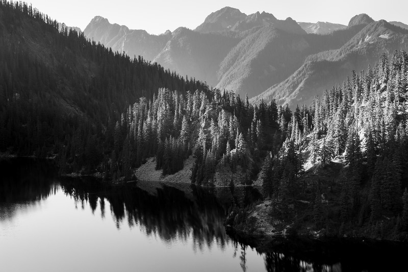 Snoqualmie Pass, Snow Lake - Sunset light cast on trees ringing Snow Lake, monochrome