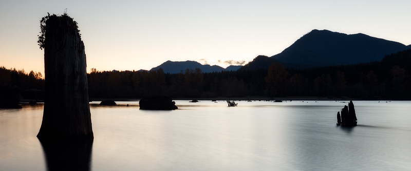 North Bend, Rattlesnake - Silhouettes of stumps in the lake at sunrise
