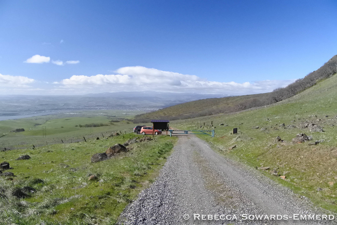 I followed Dalles Mountain Road beyond the ranch (rough) and parked at the small pullout by the locked gate.