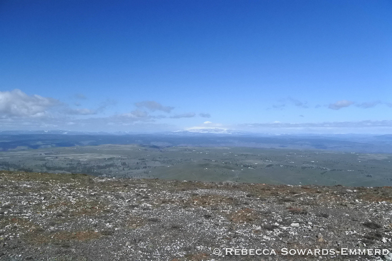 View to the north - Mt Adams