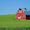 Red Barn in Palouse Country