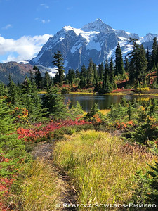 Next we drove up the Mt Baker Scenic Byway. The fall colors with Mt Shuksan backdrop were perfect!