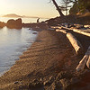 Jones Island, evening - San Juan Islands