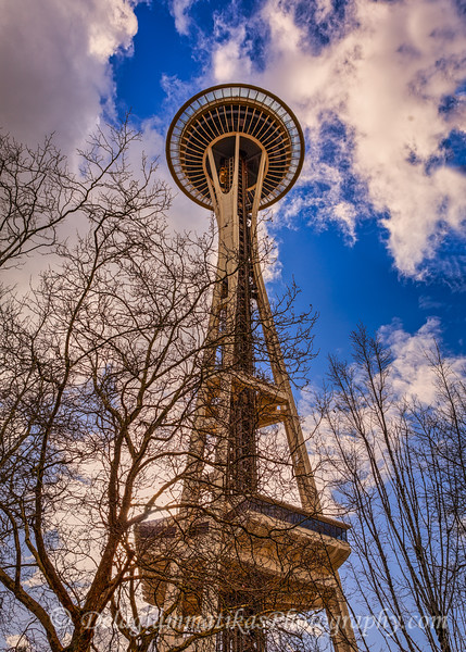 20200217_Seattle_7762