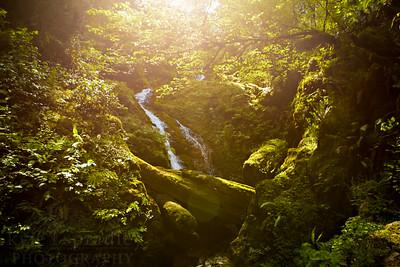 Bunch Falls Glow