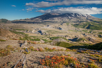 Mount St. Helens from afar.