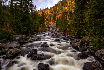 Icicle Creek Fall  1
