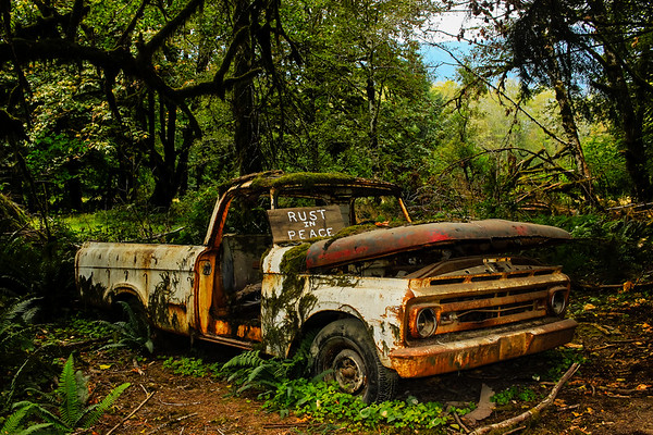 Abandoned truck in the Quinault rainforest of Washington.