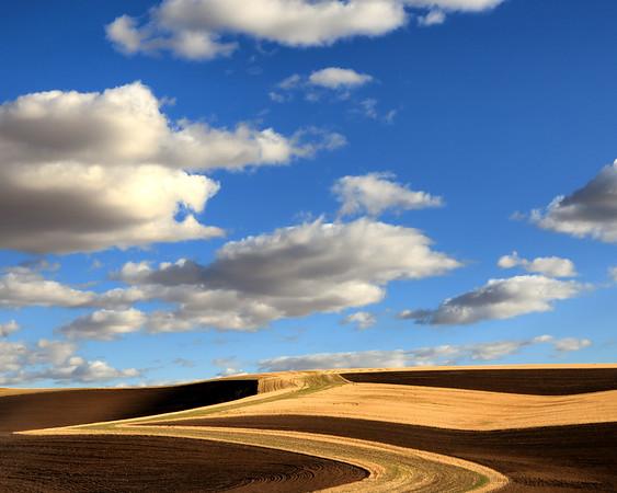 Plowed Fields and Clouds, Whitman County, WA