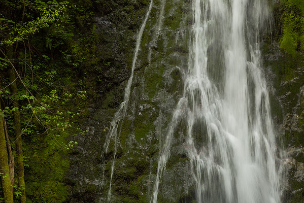 Getting a Closer Look at Madison Falls