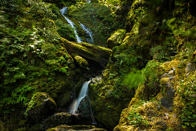 Bunch Falls is located along the South Shore Road of Lake Quinault in Olympic National Park. The cascading waterfall works its way down the hillside of moss-covered rocks and boulders before it flows into the Quinault River.  Photo by Kyle Spradley | © Kyle Spradley Photography | www.kspradleyphoto.com