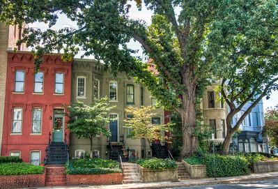 DC-neighborhood-houses