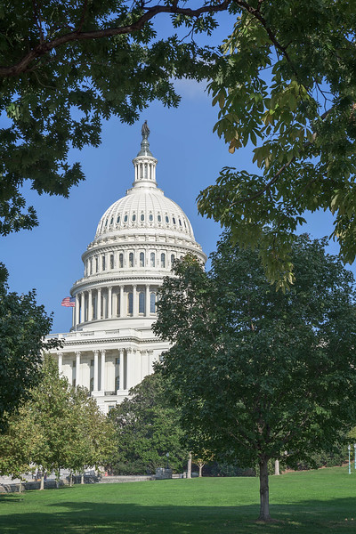 United States Capitol (at day time)