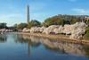Washington-1185
