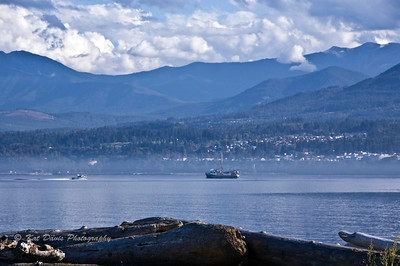 Looking at Port Angeles from The Hook.
