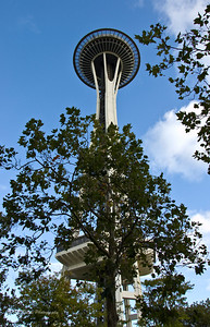Seattle Space Needle viewed from Seattle Center.