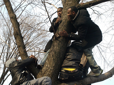 Some people climbed trees but couldn't see any better than they did on the ground and soon came down.