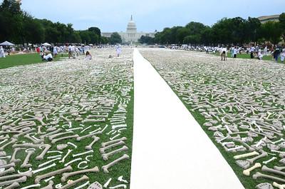 One Million Bones, National Mall, Washington DC, June 8, 2013. Photo copyright Tim Brown.